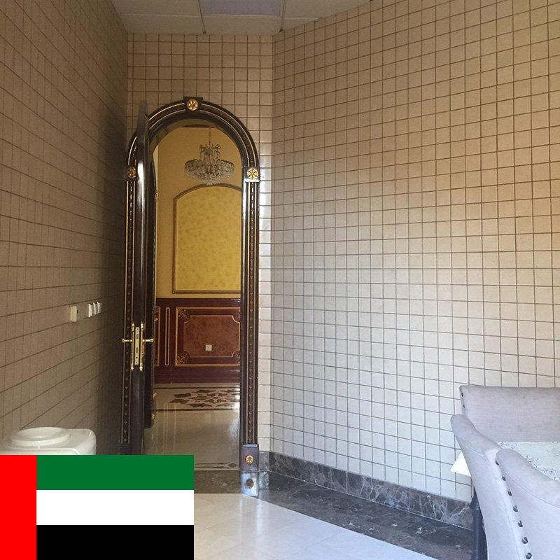 DESHENG own villas Project in Dubai