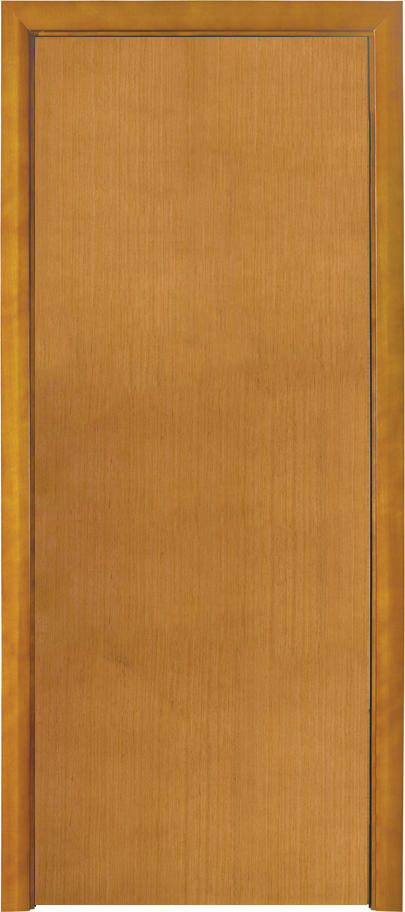 DS-FL04 Vertical Wood grain flush door design